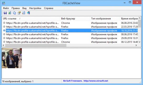 FBCacheView скан кэш браузеров.