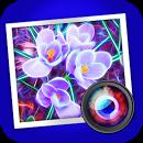 Spektrel Art - обработка изображений.